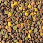 15789341 - close up on pet food